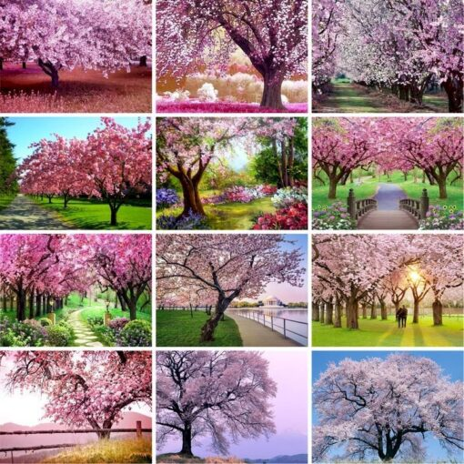Cherry Blossom Paint By Numbers | My Art Hour