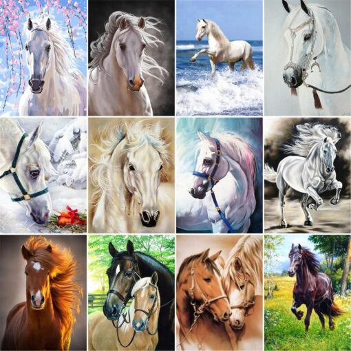 Horse Paint By Numbers | My Art Hour