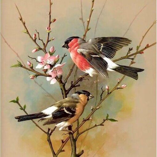 Bird Paint By Numbers   My Art Hour